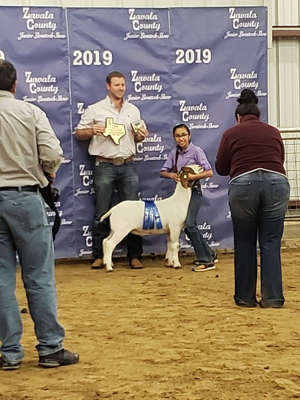 Ashlyn Martinez - 2019 Stockshow