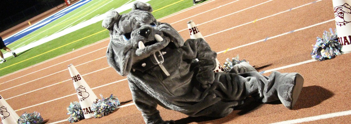Mascot Photo of Bulldog