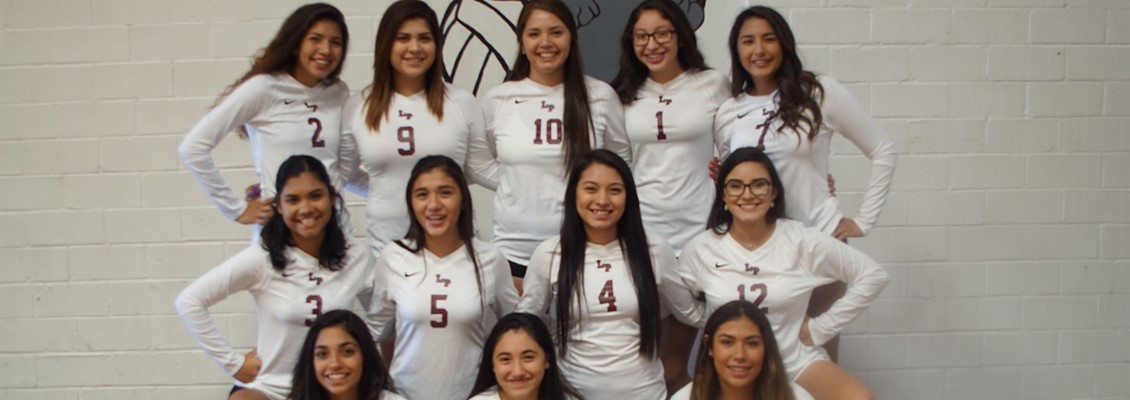 Picture of the varsity volleyball team
